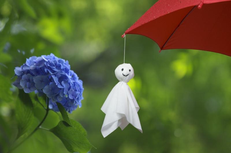 梅雨シーズン到来(_ _).。o○