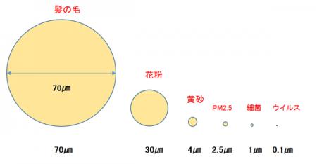 2015新型ノロウイルス「GⅡ・17」旧型との違いと予防対策